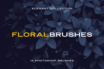 How to Install & Use a Photoshop Brush in 3 Minutes | Design