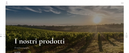 View Information about Agostinetto Wine