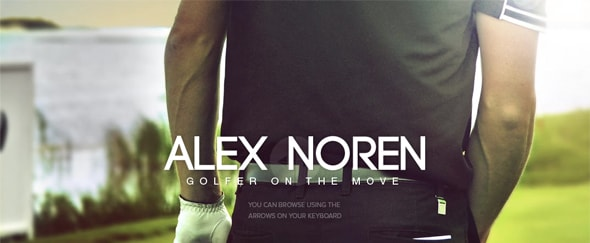 View Information about Alex Noren