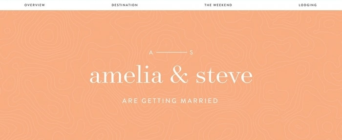 View Information about Amelia and Steve