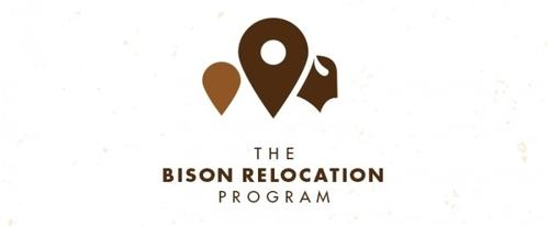 View Information about Bison Relocation