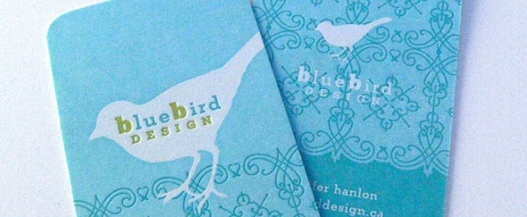 View Information about Bluebird Design BC