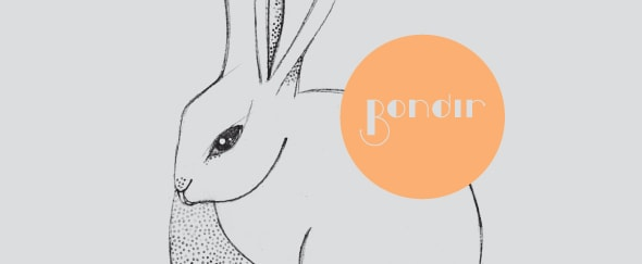 View Information about Bondir