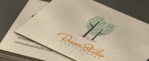 View Information about Dream Studio