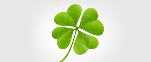 View Information about Clover