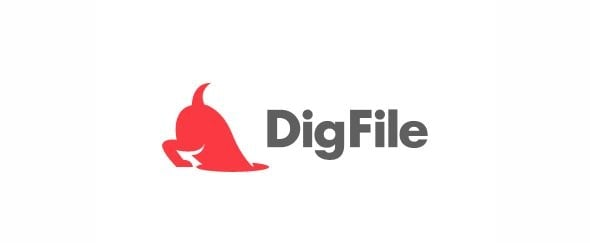 View Information about DigFile
