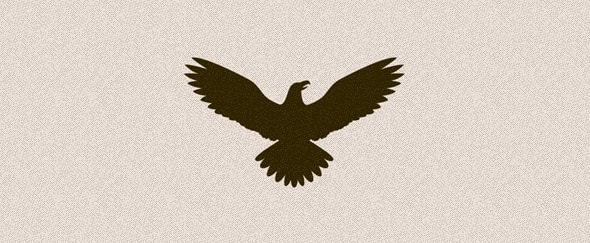 View Information about Eagle Icon