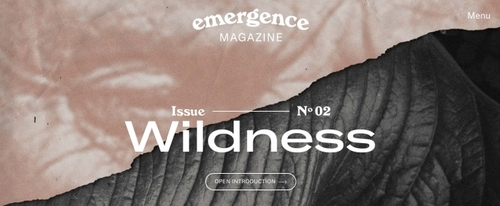 View Information about Emergence Magazine