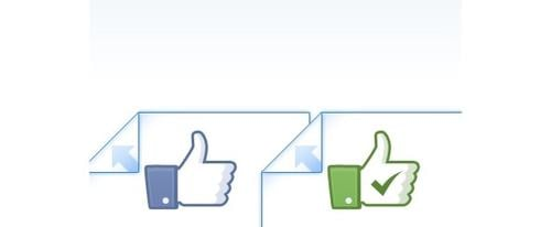 View Information about Facebook Like