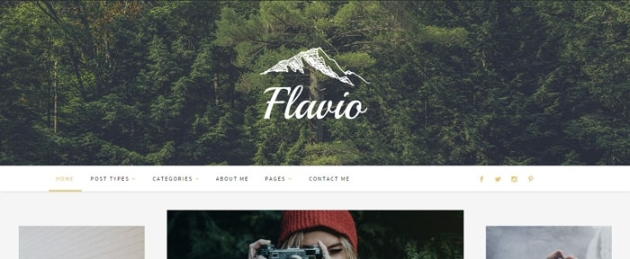 View Information about Flavio WordPress Theme