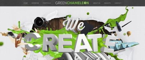 View Information about Green Chameleon