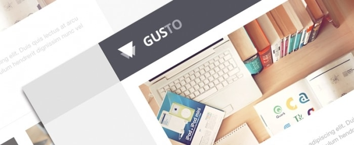 View Information about Gusto Email Template