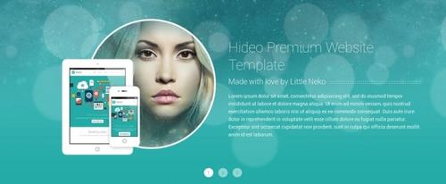 View Information about Hideo Template