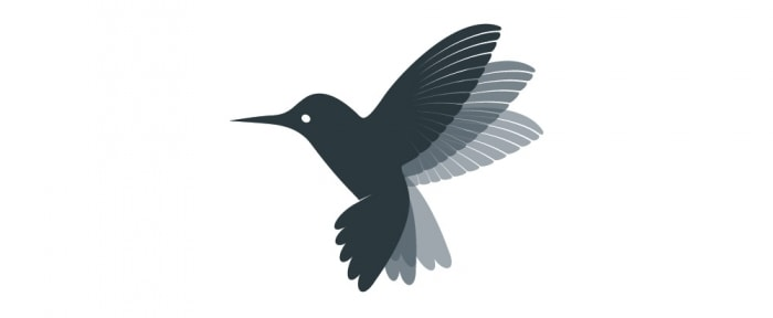 View Information about Hummingbird