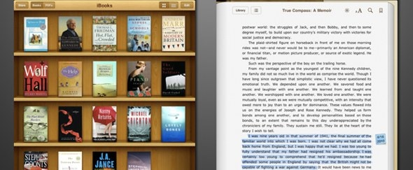 View Information about iBooks