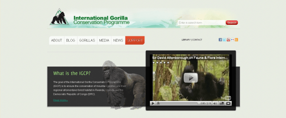 View Information about International Gorilla Conservation Programme