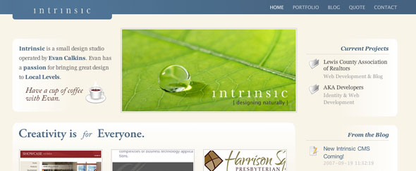 View Information about Intrinsic Studio