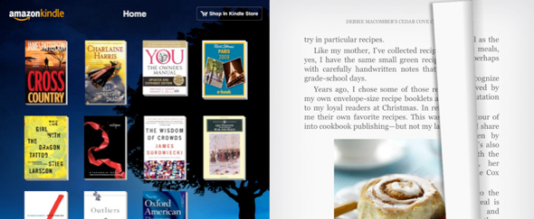View Information about Kindle for iPad