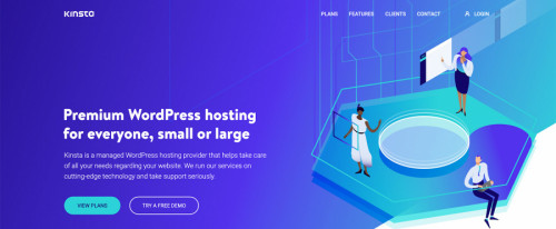 View Information about Kinsta