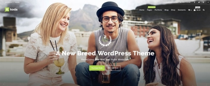 Go To Koda WordPress theme