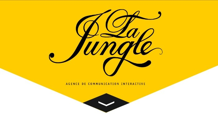 Go To La Jungle Design
