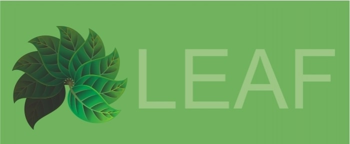 View Information about Leaf