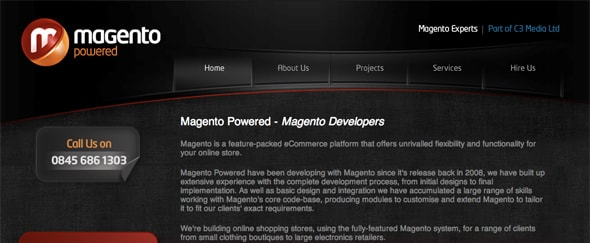 View Information about Magento Developer
