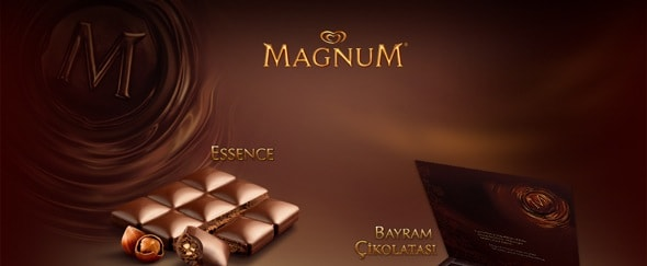 View Information about Magnum Minisite