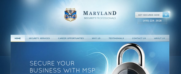 View Information about Maryland Security Professionals