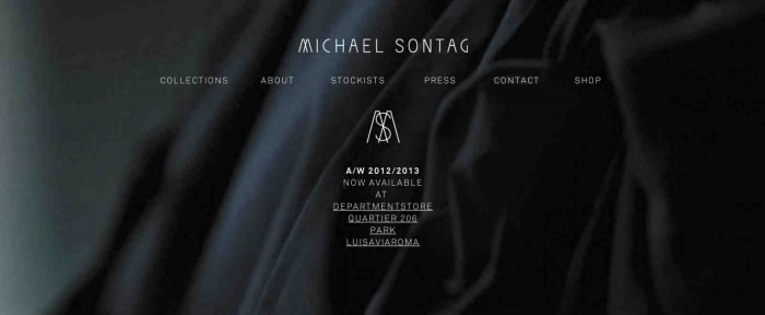 View Information about Michael Sontag