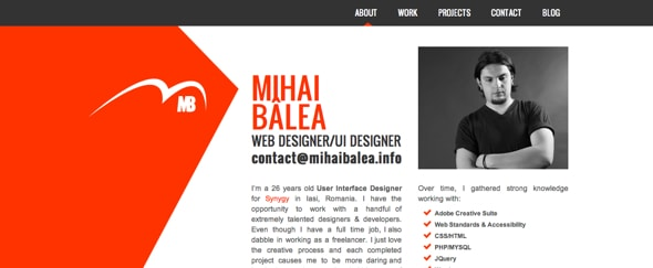 View Information about Mihai Balea