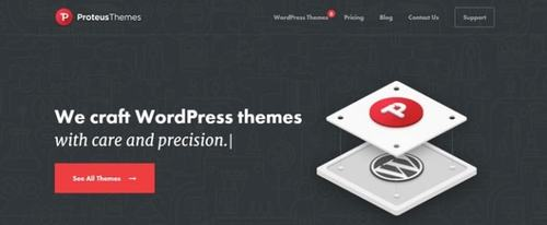 View Information about ProteusThemes