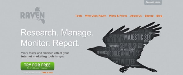 View Information about Raven