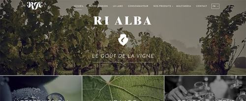 View Information about Ri Alba