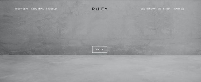 View Information about RiLEY Studio