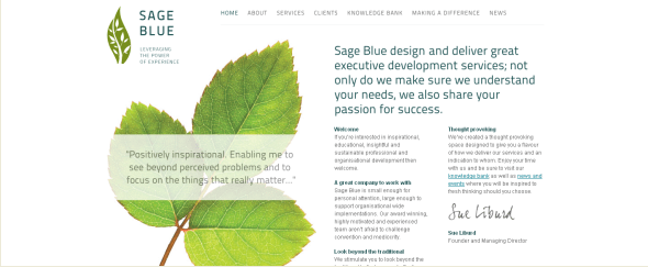 View Information about Sage Blue
