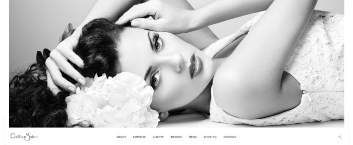 View Information about Salon - Elegant Full-Screen Theme