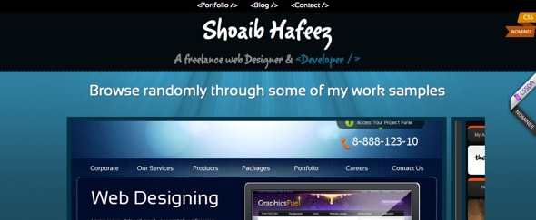 View Information about Shoaib Hafeez