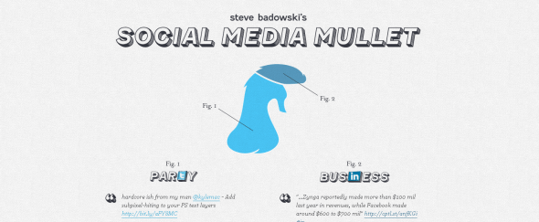 View Information about Social Media Mullet