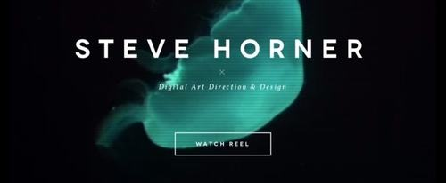 View Information about Steve Horner