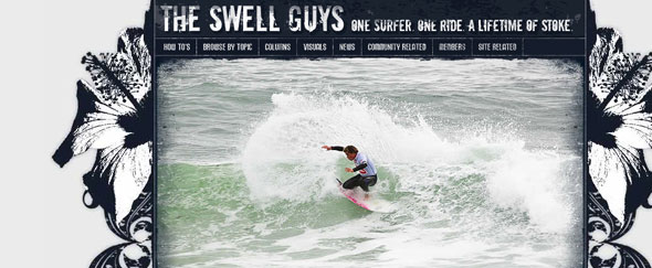 View Information about Swell Guys
