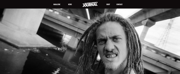 View Information about The Skateboarder's Journal