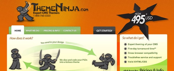 View Information about Theme Ninja