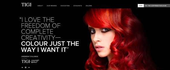 View Information about TIGI Professional