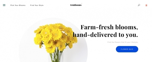 View Information about Trublooms
