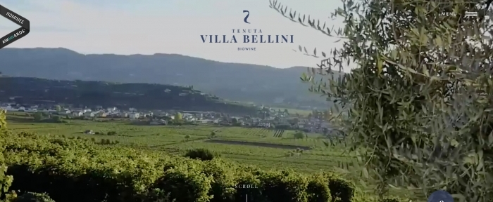 View Information about Villa Bellini