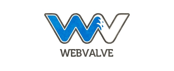 View Information about Webvalve