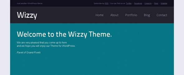View Information about Wizzy