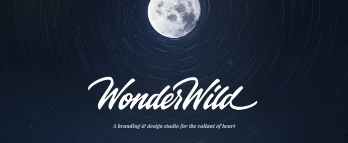 View Information about WonderWild