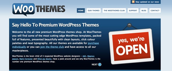 View Information about Woothemes